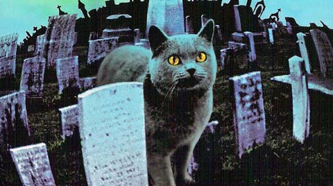 Stephen King adaptations pet sematary